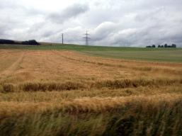 Fulda IMG_5527